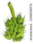 Small photo of A bunch of raw bananas in the vertical line isolated on white background. The banana rich in 3 types of natural sugars, sucrose, fructose & glucose. With fiber, dietary fiber, vitamin B6 & potassium.