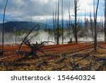 yellowstone national park ...