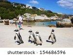 Boulders Beach  South Africa  ...