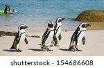 boulders beach  south africa  ... | Shutterstock . vector #154686608