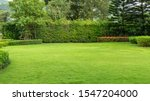 Fresh green burmuda grass smooth lawn as a carpet with curve form of bush, trees on the background, good maintenance lanscapes in a garden under cloudy sky and morning sunlight - stock photo