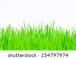young green rice isolate on... | Shutterstock . vector #154797974