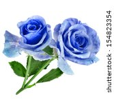 Two Beautiful Blue Rose...