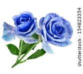 Two Beautiful Blue Rose...