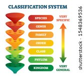 classification system vector...