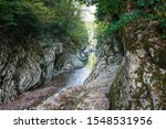 khosta river in the national... | Shutterstock . vector #1548531956