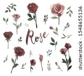 set of watercolor theme  roses  ... | Shutterstock . vector #1548655136