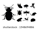 collection vectors of insect...   Shutterstock .eps vector #1548694886