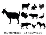 collection vectors of domestic... | Shutterstock .eps vector #1548694889