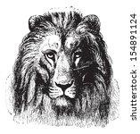 Close Up Of A Lion's Face ...
