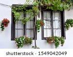 Beautiful Windows Decorated...