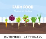 bed with different root... | Shutterstock .eps vector #1549451630