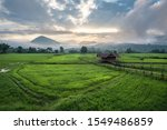 beautiful stepped rice field on ... | Shutterstock . vector #1549486859