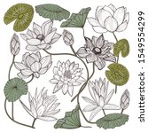 Lotus Flower Vector Set. Hand...