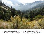 San Bernardino Mountains ...