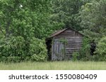 Abandoned Shed Being Overgrown...
