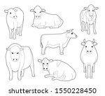 Domestic Cow Cute Cartoon...