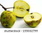 Apple Scab  Fruit Disease