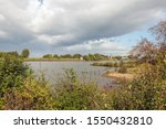 Bank Of The Dutch River Lek...