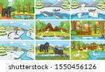 background scenes of animals in ...   Shutterstock .eps vector #1550456126
