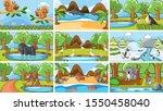 background scenes of animals in ... | Shutterstock .eps vector #1550458040