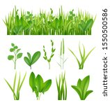 grass realistic. ecology set... | Shutterstock .eps vector #1550500586