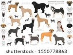 working  service and watching... | Shutterstock .eps vector #1550778863