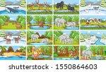 background scenes of animals in ... | Shutterstock .eps vector #1550864603