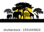 silhouette giraffe and elephant ... | Shutterstock . vector #1551445823