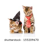 two cats in costume for a... | Shutterstock . vector #155209670