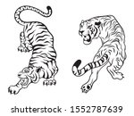 set of big tigers. collection... | Shutterstock .eps vector #1552787639