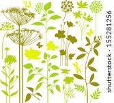 big set of green plants | Shutterstock .eps vector #155281256