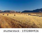 Hay Bales In Field  Eastern...