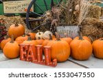 A Light Up Fall Sign With...