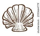 scallop sea shell. saltwater... | Shutterstock .eps vector #1553664779