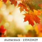 autumn background  | Shutterstock . vector #155423429