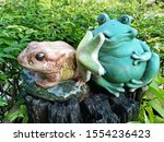 The Two Green And Brown Frog...
