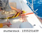 Girl On A Yacht Gutting Freshl...