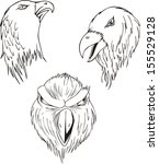 aggressive eagle heads. set of... | Shutterstock .eps vector #155529128
