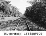 Train Track Black White Trees...