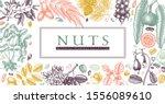 hand drawn nuts banner design.... | Shutterstock .eps vector #1556089610