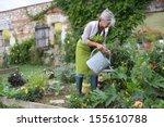 Senior Woman Watering Vegetabl...