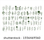 big set of hand drawn vector... | Shutterstock .eps vector #1556469560