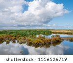 Marshland On One Of Artificial...