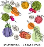 vegetable set in vector.... | Shutterstock .eps vector #1556564936