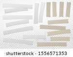 brown  white adhesive  sticky ... | Shutterstock .eps vector #1556571353