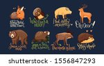 hand drawn forest animal vector ... | Shutterstock .eps vector #1556847293
