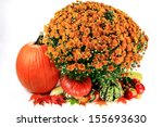 Fall Arrangement For...