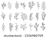collection forest fern... | Shutterstock .eps vector #1556980709
