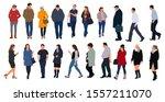 cartoon men and women walking... | Shutterstock .eps vector #1557211070